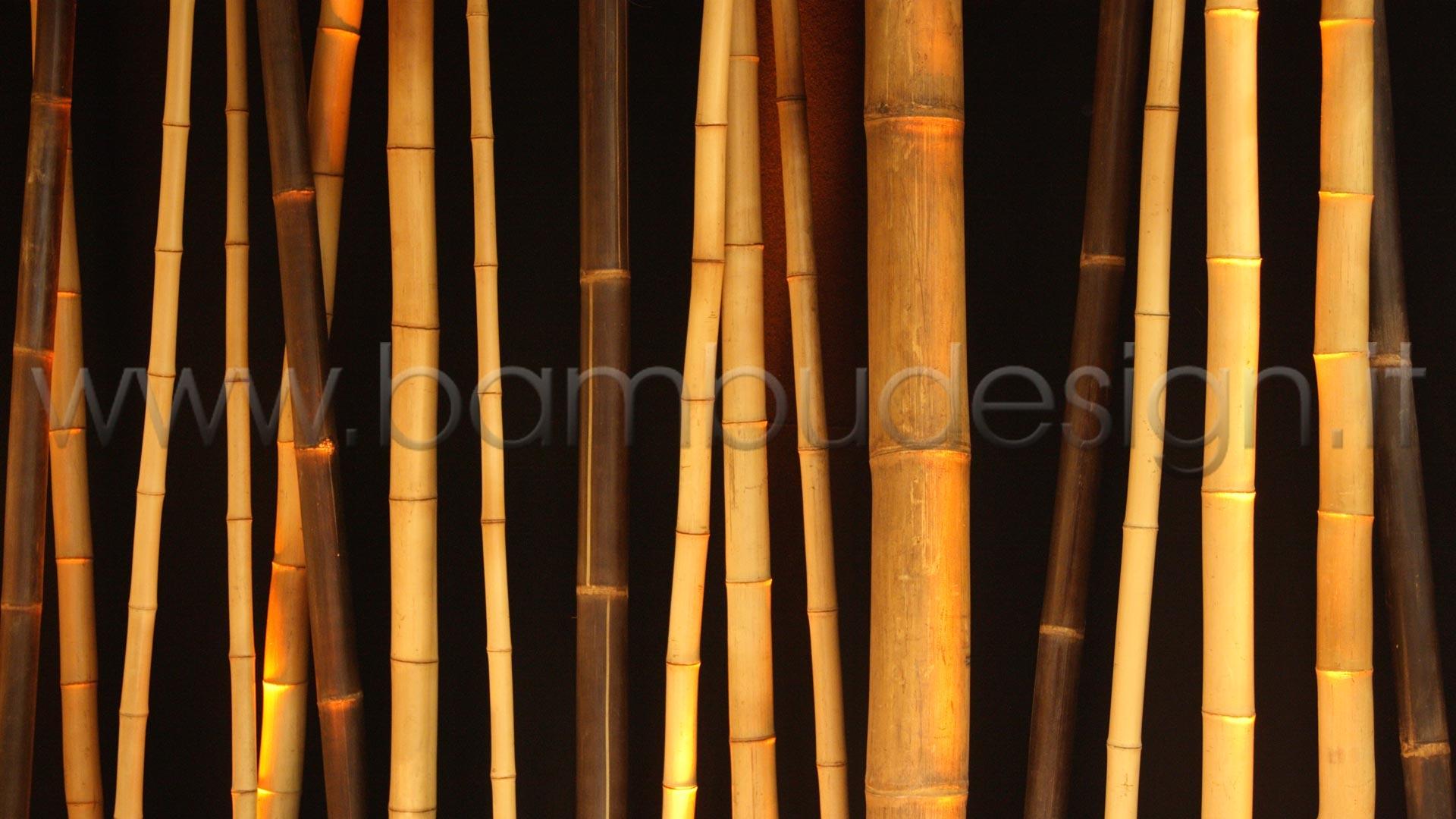 Canne di bambu 39 importazione diretta vari diametri for Bambu arredamento